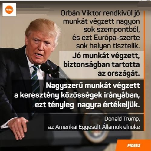 Fidesz trump plakát.jpeg
