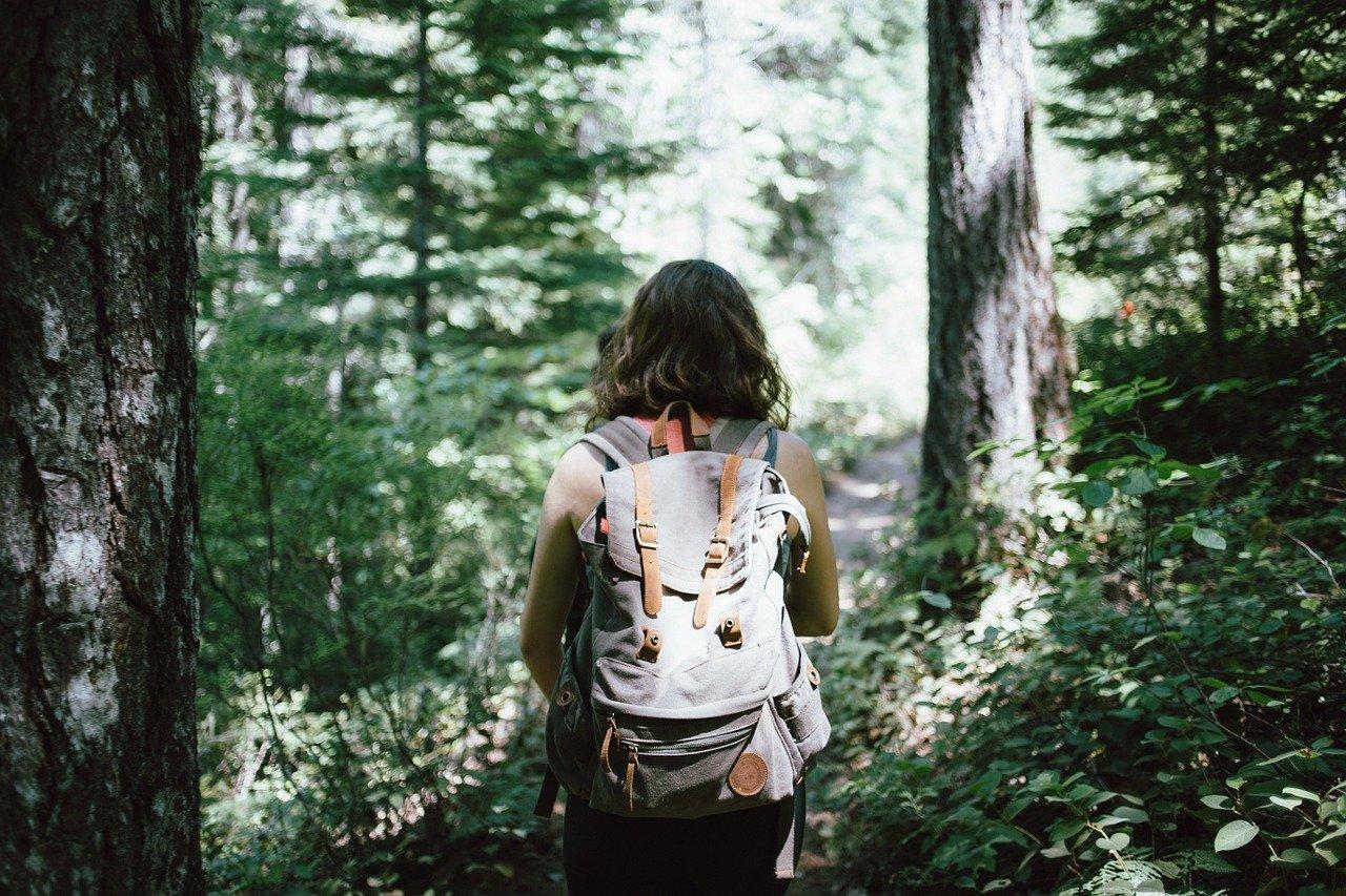 hiker-918704_1280.jpg