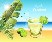 tropical_background_lime_cocktail_sea_background.jpg
