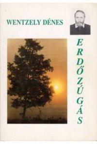 Wentzely Dénes Erdőzúgás.jpg