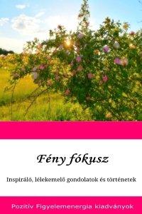 Feny fokusz(200x300).jpg