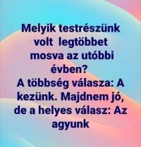 agymos1.jpg