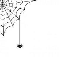 depositphotos_50723617-stock-illustration-spider-web-and-spider-vector (1).jpg