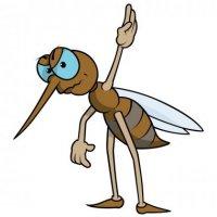 depositphotos_56165671-stock-illustration-mosquito-with-raised-hand.jpg