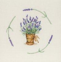 JET0011 Lavender Pot.jpg