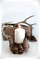 Pinecone candle.png