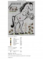 Brittercup -Raising Hooves (2).jpg