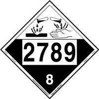 ZT4-2789.jpg