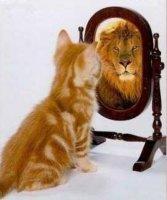 Self coaching.jpeg