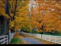 New_Hampshire-USA.jpg