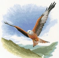Red Kite in Flight.jpg