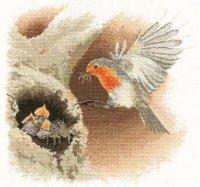 Robin in Flight.jpg