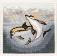 Dolphin Duo.jpg