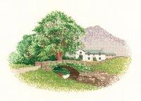 Hill Farm.jpg