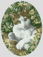 Brown_and_White_Cat.jpg