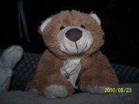 Medve.jpg
