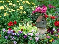 Teddy's Garden, Massachusetts.jpg