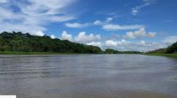 Amazonas Majmok szigete.jpeg