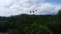 Nan Madol 18.jpeg