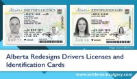 Alberta-Drivers-Licence-and-ID.jpg