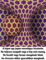 japán neurológus alkotása.jpg