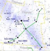 Cygnus-.jpg