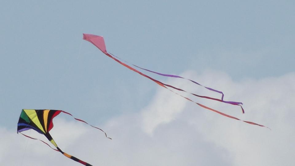 Sárkány reptető verseny
